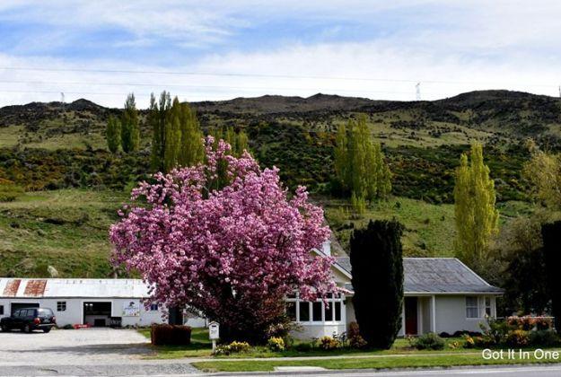 Johnsons Cottage